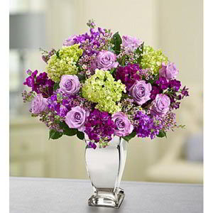Cedar Knolls Florist | Lavender Collection